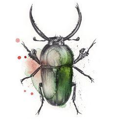 Esra Røise // Bugs - 197