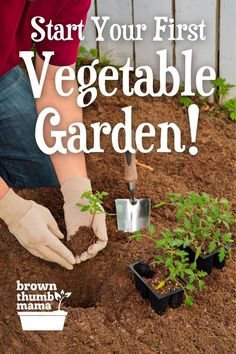 Everything you need to start vegetable gardening...just add plants! Whether you're growing vegetables in your city backyard, on an apartment patio, or on 5 acres in the country, you'll find tons of helpful information and down-to-earth gardening tips here. Vegetable Garden For Beginners, Gardening For Beginners, Vegetable Gardening, Organic Gardening, Container Gardening, Gardening Tips, Diy Garden Bed, Easy Garden, Raised Garden Beds