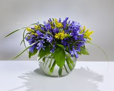 Agapanthus and Golden Rod in a bubble bowl (Available in our online shop)