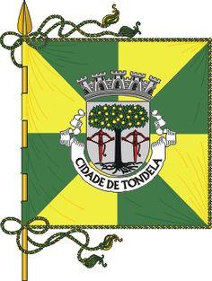 Bandeira de Tondela
