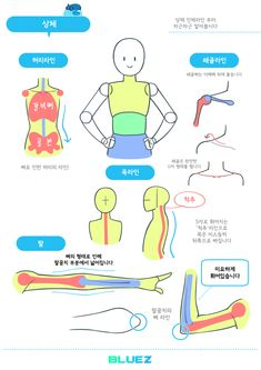 Body Drawing Tutorial, Manga Drawing Tutorials, Sketches Tutorial, Drawing Tips, Body Reference Drawing, Art Reference Poses, Learn To Draw Anime, Cartoon Body, Instruções Origami