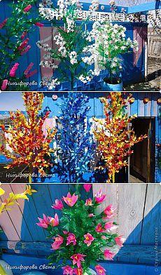 """Поделки """"Деревья и цветы"""" из пластиковых бутылок, бросового материала. - Поделки из пластиковых бутылок - Поделки из разных материалов - Каталог статей - Рукодел.TV"""