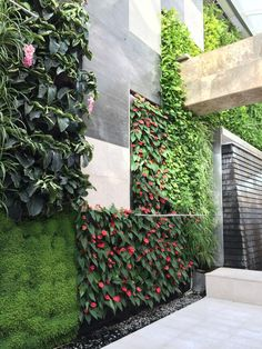Living wall at Galleria Mall Vertical Planting, Vertical Garden Design, Plantation Verticale, Vertikal Garden, Green Facade, Growing Greens, Garden Nursery, Green Architecture, Rooftop Garden