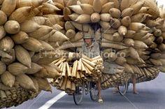Vietnam, basket salesman