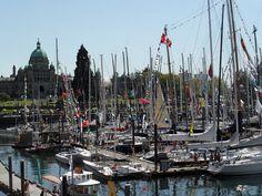 Sailboats in Victoria, Canada