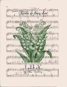 Lily of the Valley flower print on dictionary or music book page. Botanical print with delicate white lily of the valley flowers dictionary page art