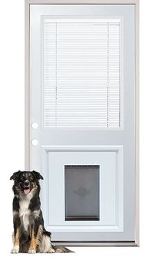 Best 25 pet door ideas on pinterest contemporary dog - Interior door with pet door installed ...