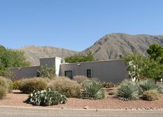 NW El Paso Residence - side with Blue Sotol, Apache Plume, Desert Prickly Pear (QUERCUS, 2001)