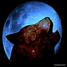 Blue Moon Howl : Blue Moon is Full Moon in a month Dog: Chinese Year of the Dog Dog: clipart Pixabay Moon : my stock image : :lousephyr.