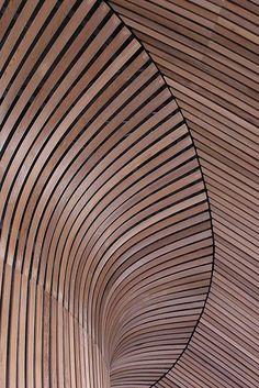 Y Senedd Caerdydd Wood Texture