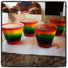 Rainbow Jello Shots! 8 flavors of Jello, vodka, rum... Yum!