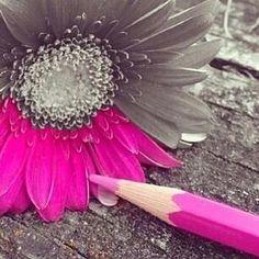 لون حياتك بالطاعات ..!!