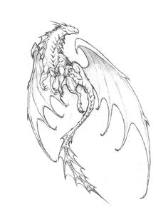Wings Of Fire Dragons, Cool Dragons, Creature Drawings, Animal Drawings, Fantasy Dragon, Fantasy Art, Dragon Poses, Dragon Anatomy, Walpapers Cute
