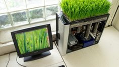 Unusual computer with a green lawn | Ideas for Home Garden Bedroom Kitchen - HomeIdeasMag.com