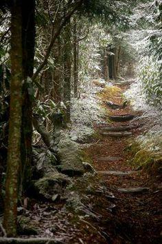 Appalachia Trail, Tennessee