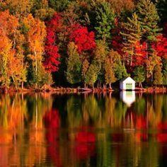 The Season of Fall in Michigan.