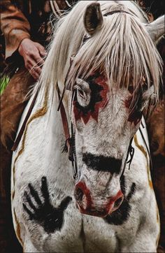 This is amazing. I love native paintings on horses.
