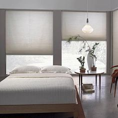 cellular shades (disappear neatly when they are open, allowing for maximum light during the day while providing privacy when they are drawn)