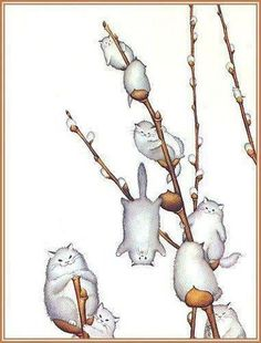 Love this...Pussy Willow..... OK, so don't really want this as a tattoo, but SO CUTE!!