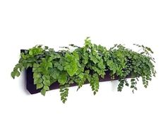 5 Pocket Horizontal Windowbox Planter -- Now in Stock and on Sale!