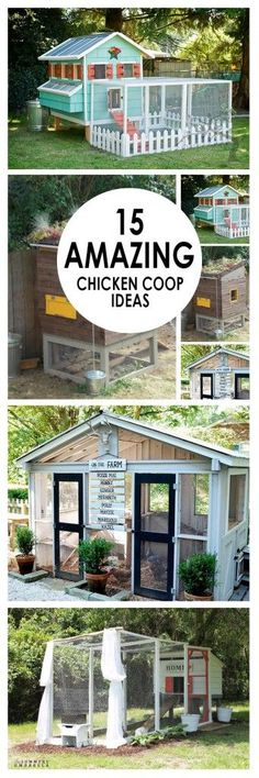 Chicken coop, chicken coop ideas, DIY chicken coop, popular pin, outdoor landscaping, outdoor living, outdoor living hacks, outdoor DIYs.