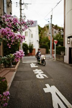 Alley in Tokyo -- very much how I remember Tokyo looking when i was there in 1981.