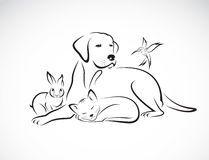 Vector o grupo de animais de estimação - cão, gato, pássaro, coelho, Foto de…