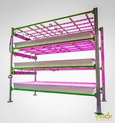 Indoor Harvest Vertical Farming Platform with Illumitex LED lights.