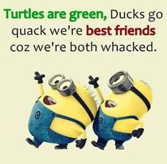 Crazy Friends, True Friends, Funny Memes, Hilarious, Jokes, Card Sayings, Humorous Sayings, Cute Posts, Minions Quotes