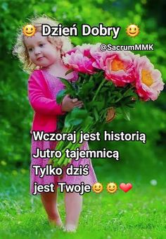 Success, Nun, Pictures, Fotografia, Polish Sayings, Funny Dogs, Good Morning