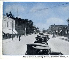 Main Street Looking South, Scotland Neck, N. Car. :: North Carolina Postcards