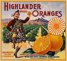 Alta Loma California Quail Orange Citrus Fruit Crate Box Label Art Print