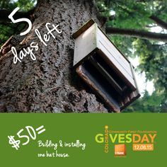 Countdown: 5 more days until #ColoradoGives Day! Read more or get links to donate or pledge: http://rockymountainwild.org/donate/giving