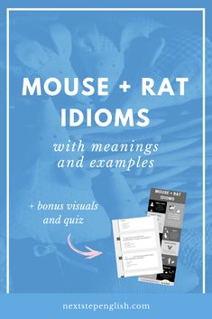 Mouse + Rat Idioms with Meanings and Examples Advanced English Vocabulary, English Vocabulary Words, English Idioms, English Words, Vocabulary Cards, Idioms And Meanings, English Language Learners, Language Lessons, Confusing Words