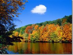 """Nature is an art. It's a beautiful question! Our touch with nature makes the whole world kin. Matthew Arnold has rightly said that: """"Nature, with equ. Heart In Nature, All Nature, Beautiful World, Beautiful Places, Beautiful Pictures, Double Vitrage, Autumn Trees, Autumn Lake, Autumn Forest"""