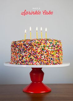 Sprinkle Cake DIY | Oh Happy Day! #party #cake #sprinkles