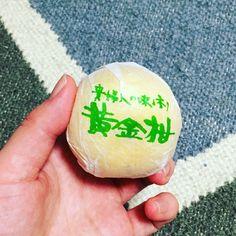 鹿児島の黄金柑 小さくて甘い。百貨店ではめちゃくちゃ高いそうです。