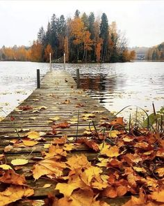 Beautiful World, Beautiful Places, October Country, Sweet November, Hello October, Autumn Scenes, Autumn Photography, Autumn Inspiration, Belle Photo