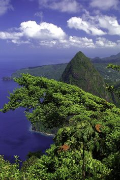 View of the Petit Piton from the top of the Gros Piton Trail - St. Lucia - The Caribbean - One of the toughest hikes I've ever completed Santa Lucia, Dream Vacations, Vacation Spots, Travel Around The World, Around The Worlds, Pointe À Pitre, Rio, Fauna, Thailand
