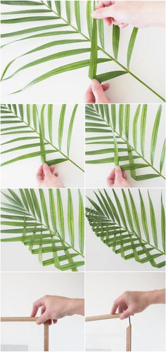 DIY-Leaf-Art-Manipulation-Tutorial @monsterscircus