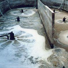 Tsurumi Pump - Solutions - Sewage & Wastewater Pump, Dark, Pump Shoes, Pumps, Slipper