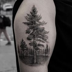 55 Magnificent Tree Tattoo Designs and Ideas - TattooBlend Forest Tattoos, Nature Tattoos, Body Art Tattoos, Sleeve Tattoos, Tatoos, Tree Tattoo Arm, Pine Tree Tattoo, Evergreen Tattoo, Tree Tattoos
