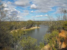 """""""View from the Eagle's Nest!"""" - Taken from the Pioneer Settlement Park in Merbein, Victoria - overlooking the mighty Murray River. Longest river in Australia and it was a perfect day. (copyright 2013 LisaJPownall)"""