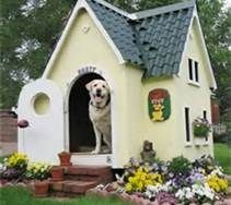 Cool Dog Houses - Bing Images