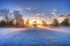 Morning-Light-500x331.jpg (500×331)