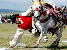 Image result for mongolian horse racing