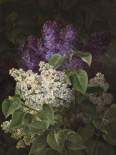 Johan Laurentz Jensen (Danish, 1800-1856) - Lilacs, oil on panel, 46,8 x 35,5 cm.