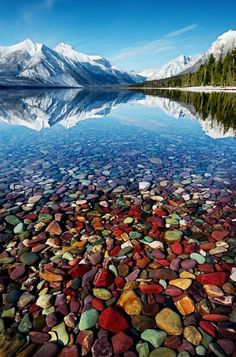 As if Lake McDonald in Montana's Glacier National Park wasn't spectacular enough, beneath the crystal clear waters of the south western shore, you'll find these amazing beach of coloured pebbles. Description from pinterest.com. I searched for this on bing.com/images