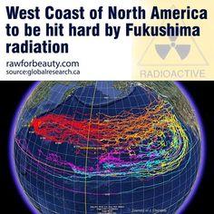 West Coast of North America to Be Hit Hard by Fukushima Radiation http://rawforbeauty.com/blog/west-coast-of-north-america-to-be-hit-hard-by-fukushima-radiation.html