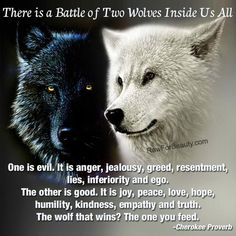 Cherokee Proverb, The Battle of two wolves inside us all